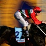 racing post betting site pics