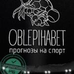 Роман Облепихин - интервью