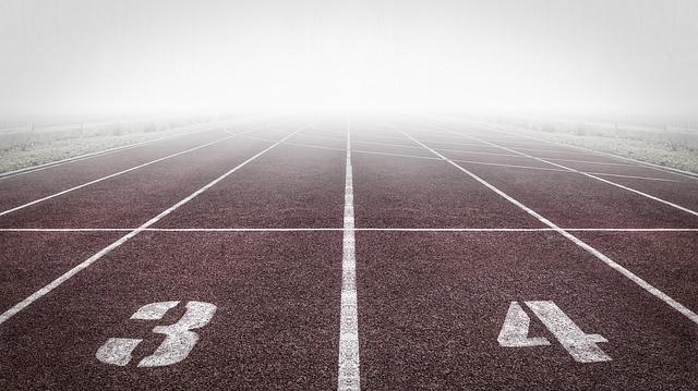 ставок в спорте программы для
