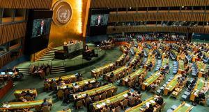 «Лига Ставок»: ООН не признает термин «беременный человек»