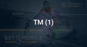 ТМ (1)