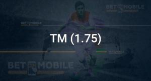 ТМ (1.75)