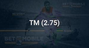 ТМ (2.75)