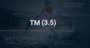 ТМ (3.5)