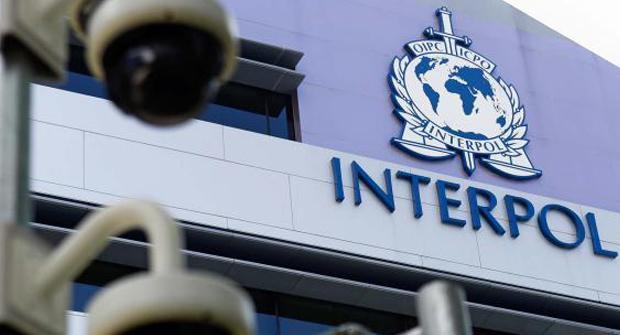 С нелегальными букмекерами теперь будет бороться Интерпол