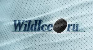 Wildice.ru: обзор сервиса статистики по хоккею