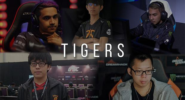Tigers – Natus Vincere