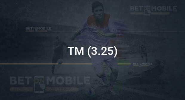 ТМ (3.25)