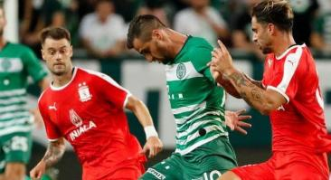 Прогноз и ставка на матч Ференцварош – Динамо Загреб 13 августа 2019 года